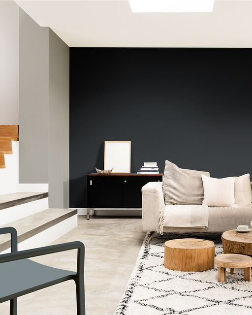Sadolin Colour_Lookbook_Stories_Industrial_Living_Room_Monochrome